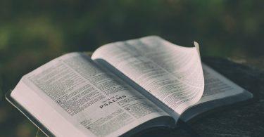 Salmo 19 para orar com os filhos